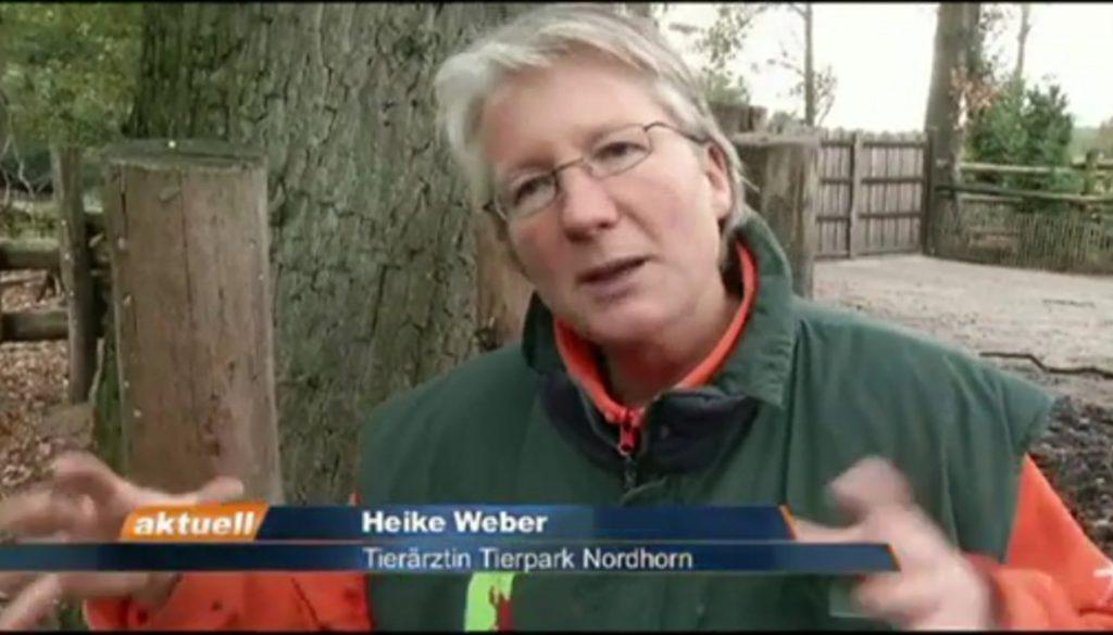 ev.tv aktuell - Dienstag 12