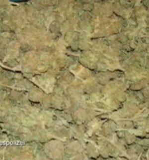 Marihuana im Wert von 100