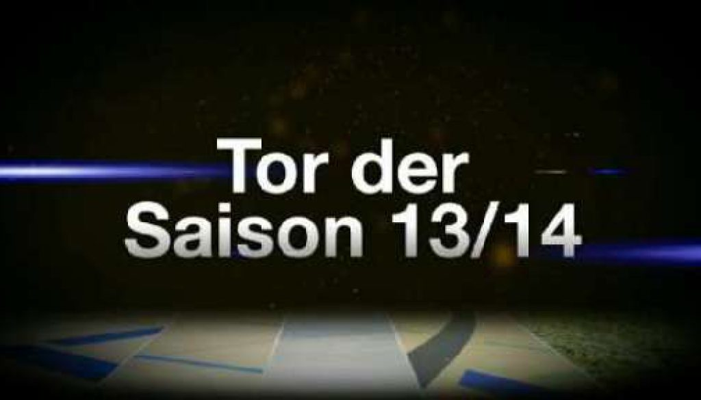 Tor der Saison 2013/2014 - Die Kandidaten