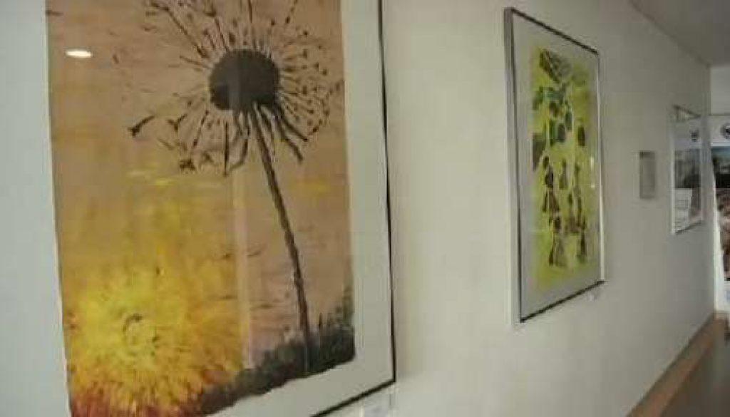 Krebspatienten stellen Bilder in der Euregio Klinik aus