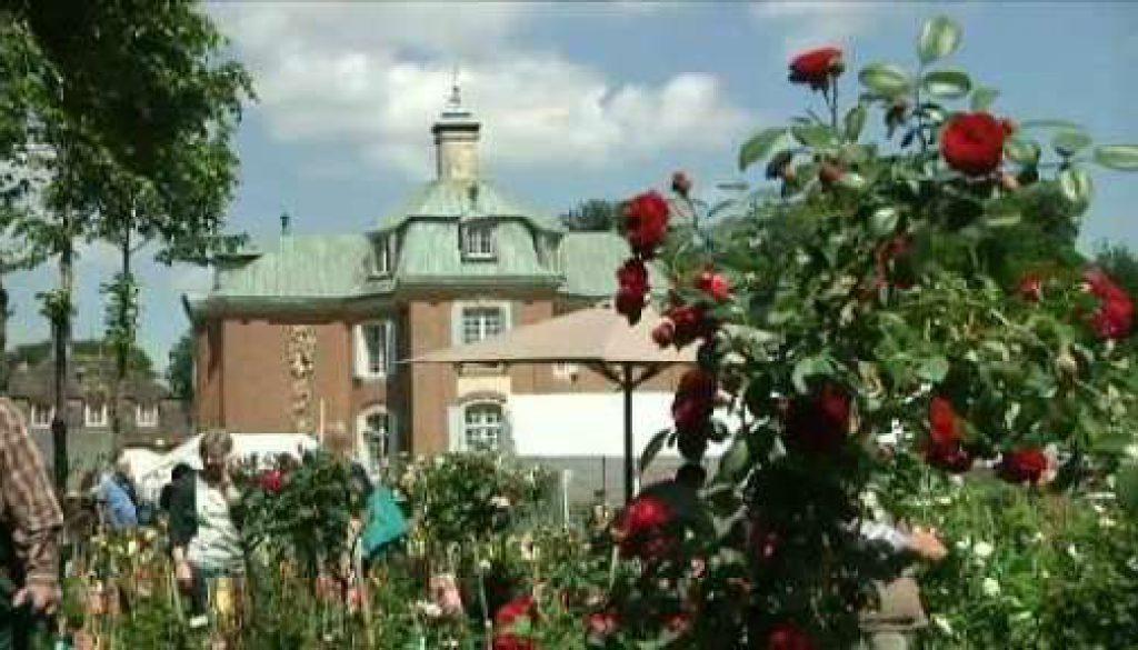 Rosenpracht auf Schloss Clemenswerth