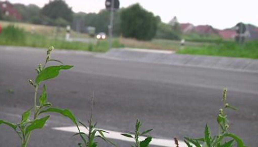 In Haren läuft es rund - Neuer Kreisverkehr eröffnet