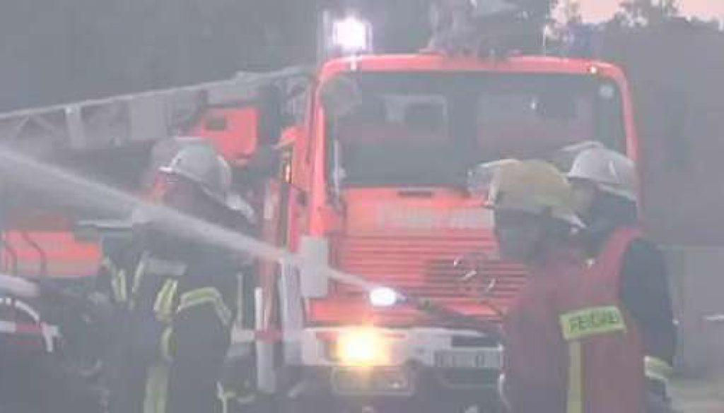 Feuerwehr rettet Kälber vor Flammentod