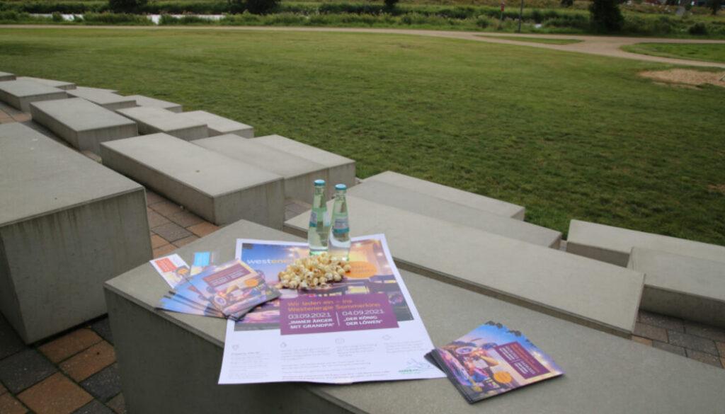 Screen_film ab open air kino am 2 august auf den harener emswiesen