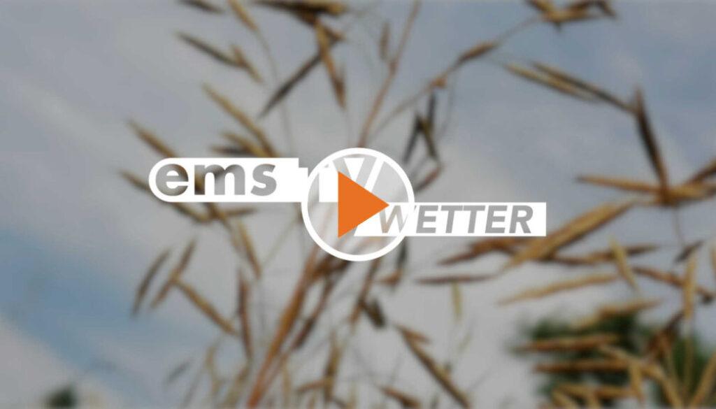 Screen_21 08 17_Wetter