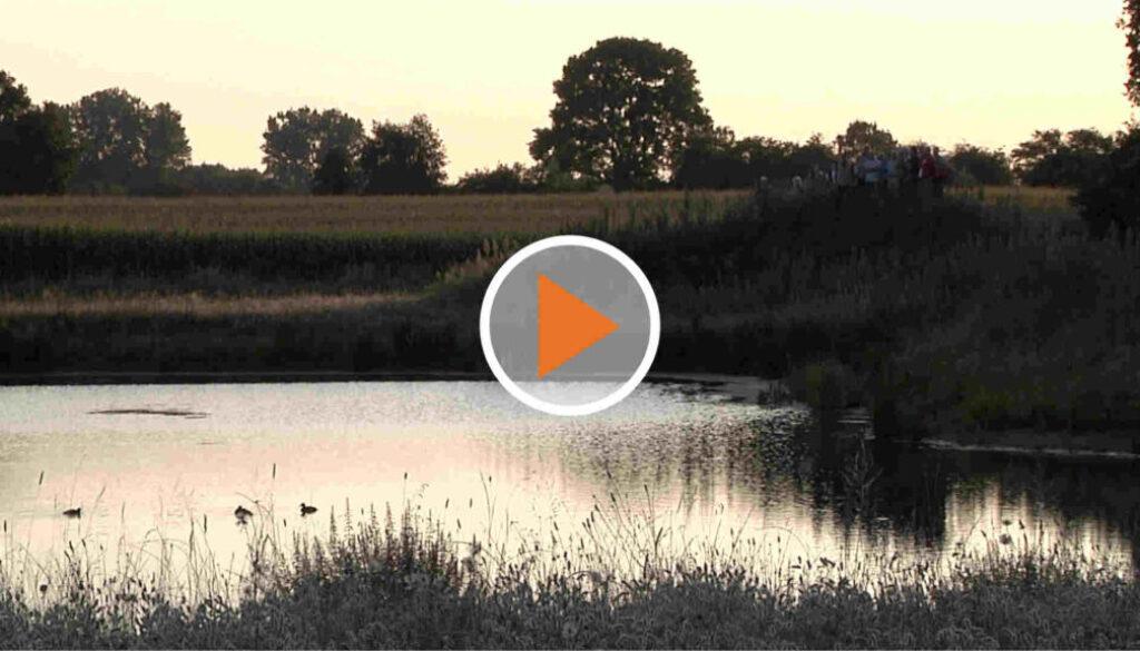 Unterstützung für Fisch und Fluss_Screen