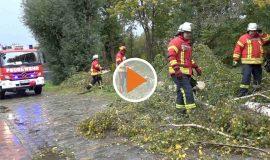 21 10 21 Ignatz reißt zwei Bäume um SCREEN