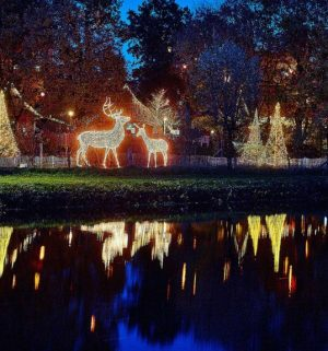 Screen_211015 Weihnachtsmarkt Tierpark